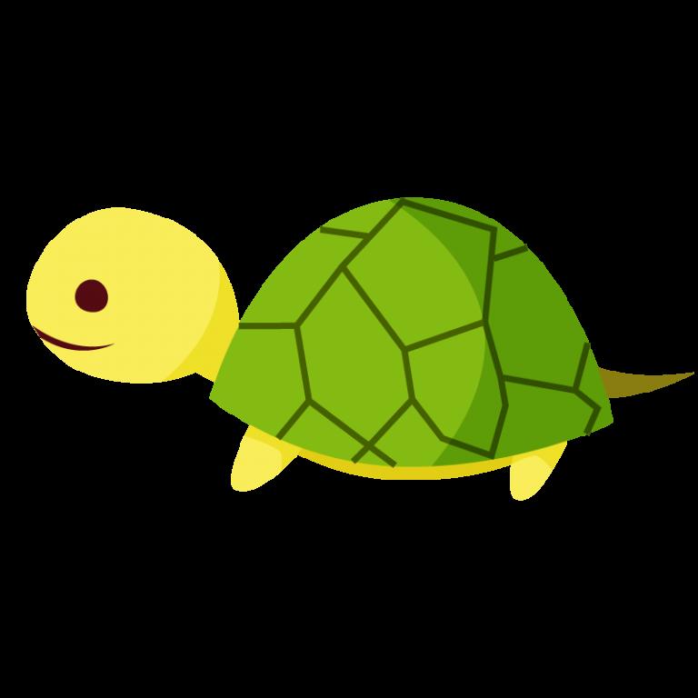亀(かめ)のイラスト素材