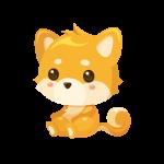 柴犬(いぬ/イヌ)のイラスト素材