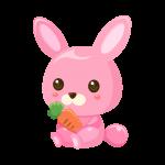 兎(うさぎ/ウサギ)のイラスト素材