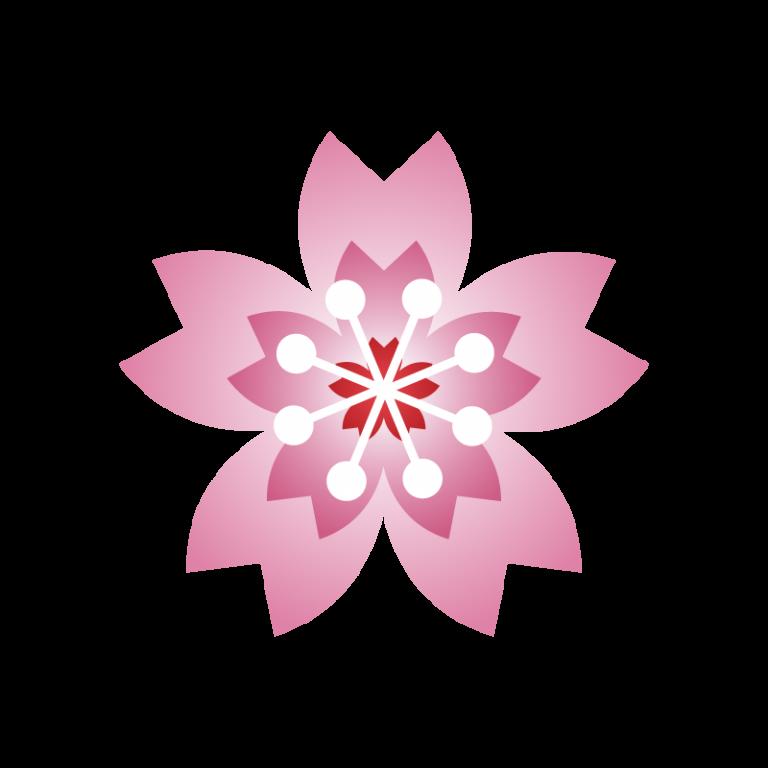 桜(さくら)のイラスト素材