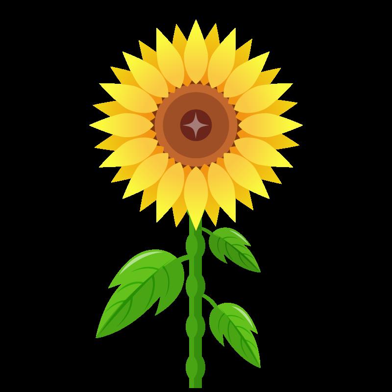 向日葵ひまわりのイラスト素材 商用可能な無料フリーのイラスト